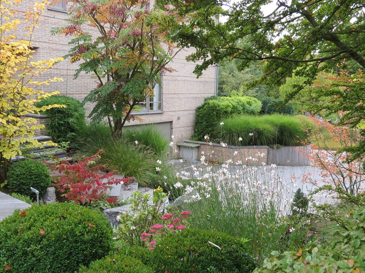 Entrée d'habitation alliant équilibre entre végétaux persistants pour la structure permanente et fleurs vivaces pour les colorations étalées durant l'année.