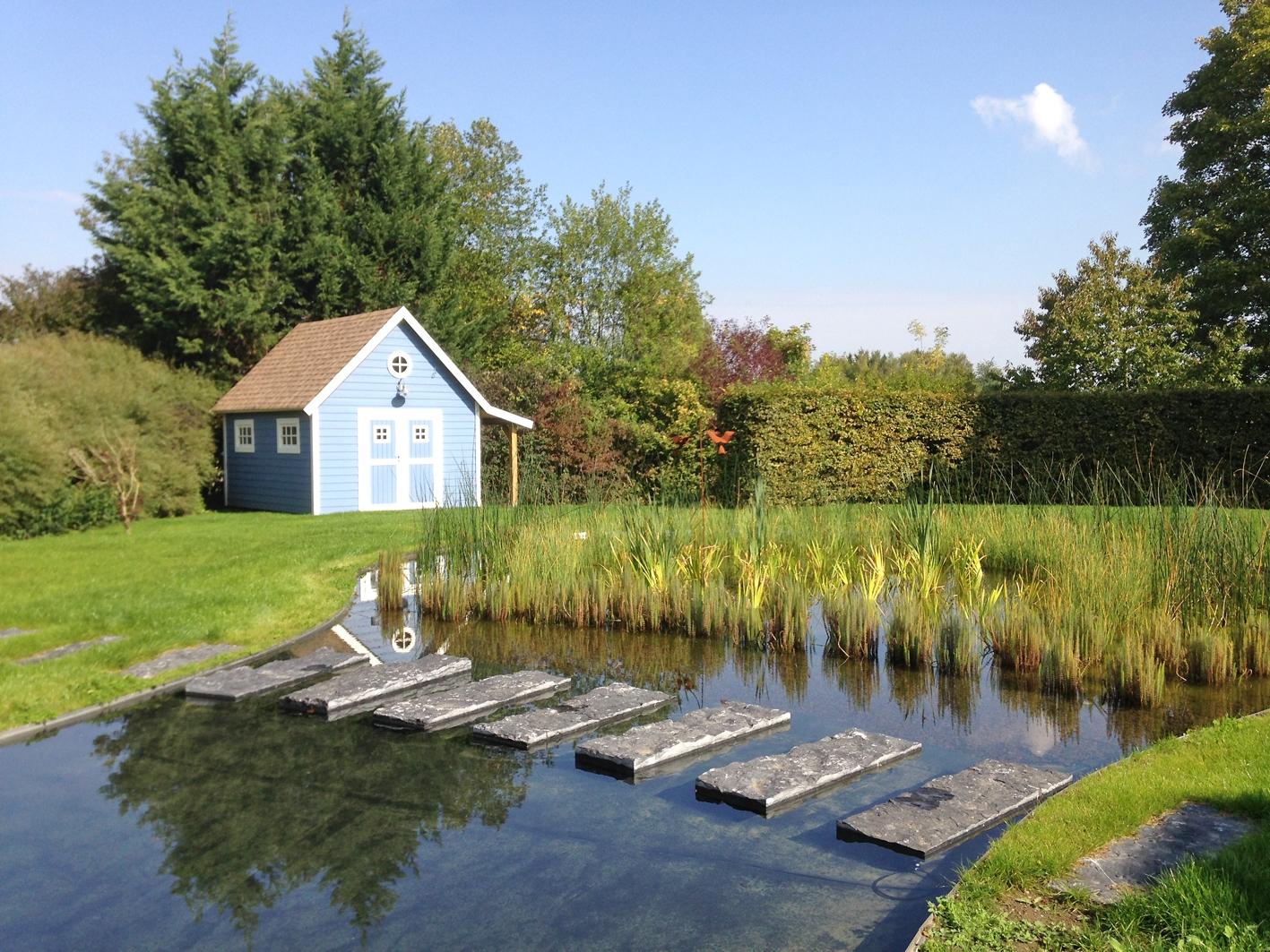 Lagunage d'étang