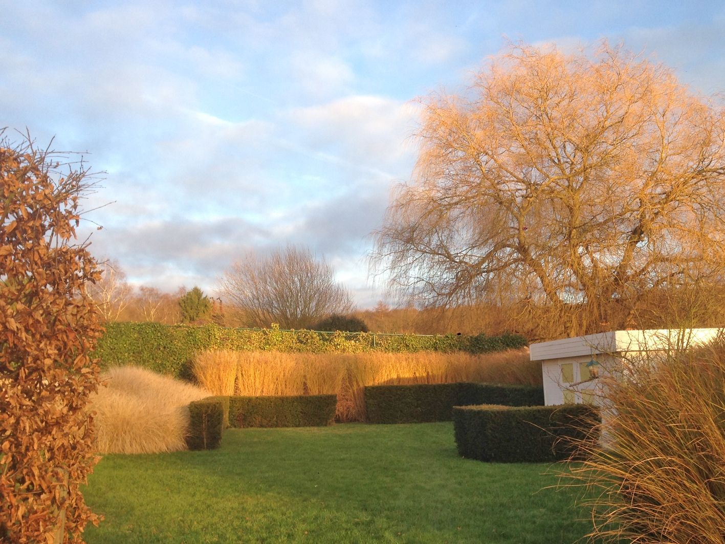 Structure du jardin hivernal